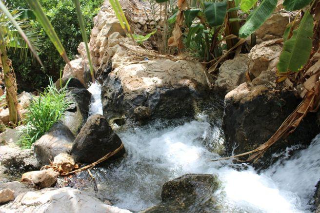 Tiwi Oman